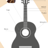 las partes de la guitarra